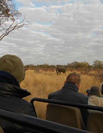Okavango Delta Day Trip: Option 3
