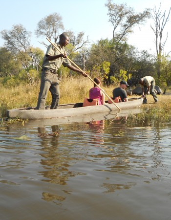 Okavango Delta Day Trip: Option 1